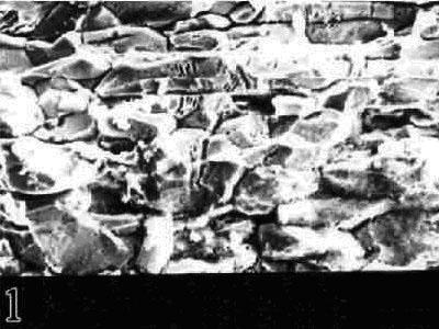 铜锌合金锥套应力腐蚀断口 图1.jpg